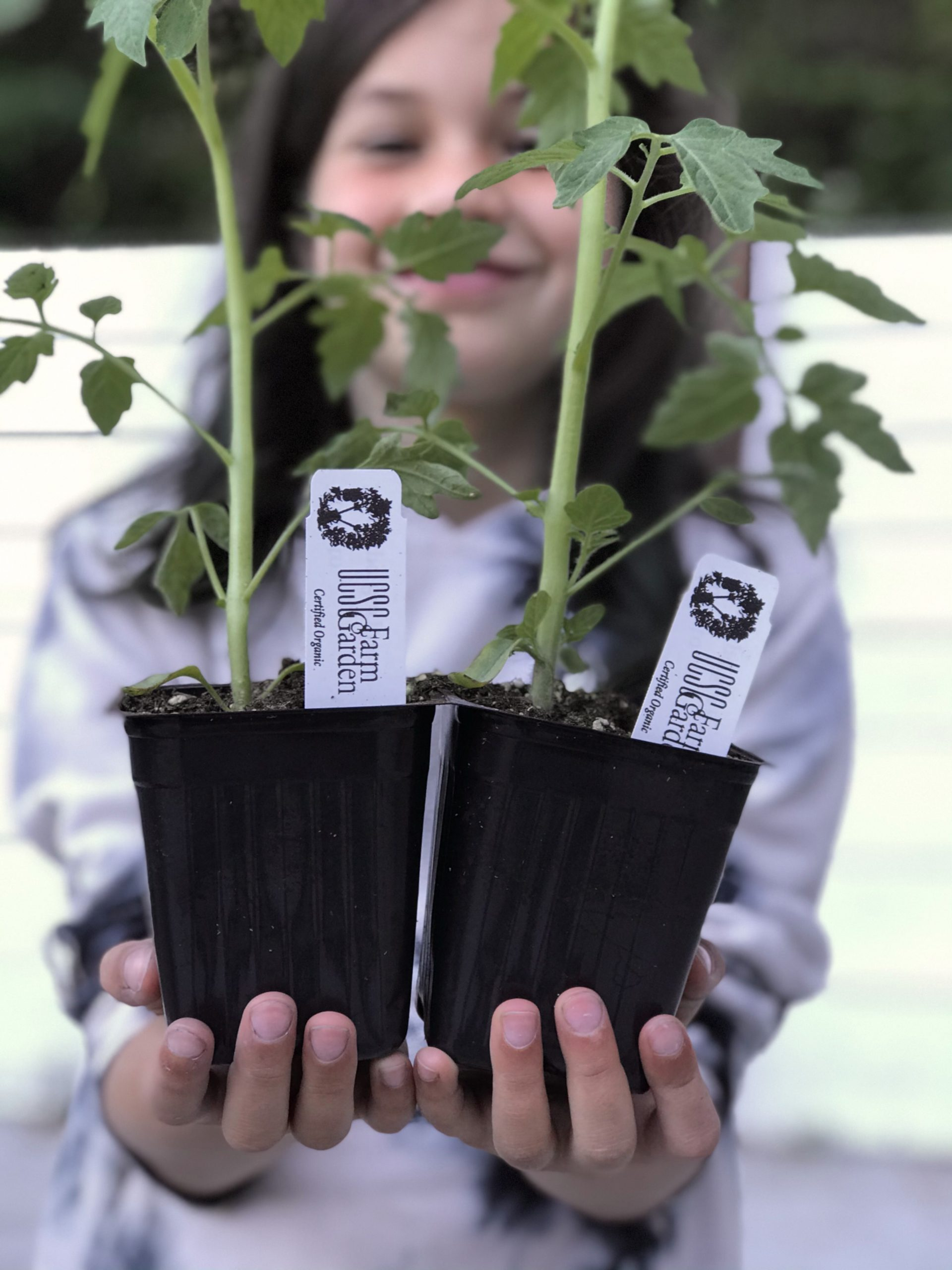 Student with UCSC Farm donated plants
